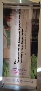 """Foro """"Incubadoras de Empresas Agropecuarias y Desarrollo Rural Sustentable"""""""